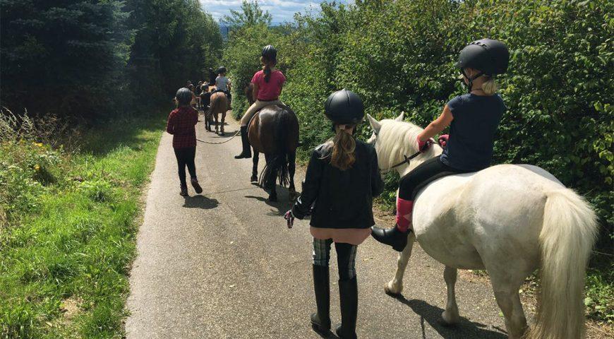 Reitercamps 2021 – die Sommercamp Termine stehen fest!
